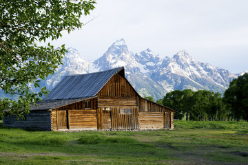 Scenic barn below snow capped mountains in The Grand Tetons.