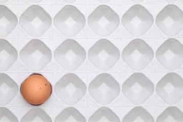 卵とトレイ