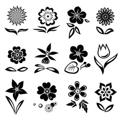 Flowers and leaves icons set. Nasturtium, camomile, primula, anemone, tulip, gowan, orchid, dog-daisy, petunia. Black signs. Floral symbol. Vector