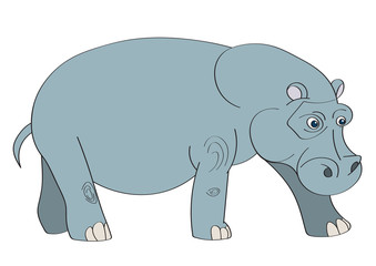 Illustration of a hippopotamus