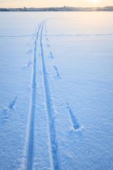 Ski tracks snow lake