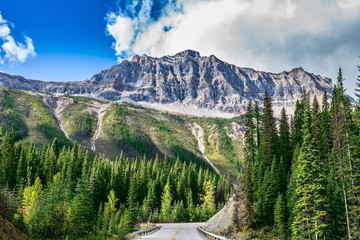 The road in Yoho National Park in Canada