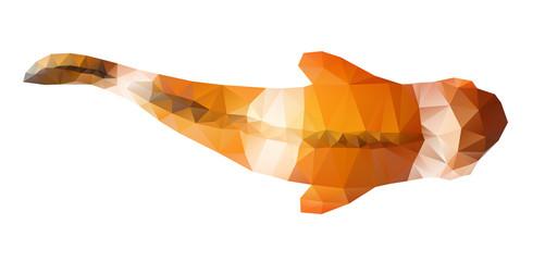Clown fish polygonal illustration