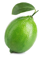 Lime. Whole lime with leaf isolated on a white background.