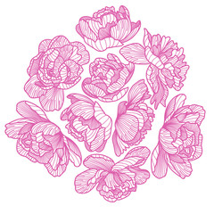 Peony drawing decorative composition.