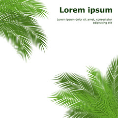 palm branch template