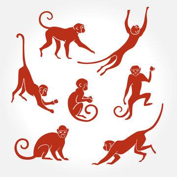 Monkey silhouette  new year