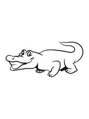 Crocodile funny naughty