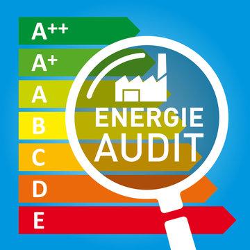 Grafik Energieaudit mit Lupe und Energieeffizienzklassen