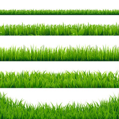 Green Grass Big Set