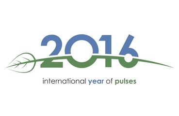2016, pulses, international year of pulses, green, blue, ecology, beans, grains