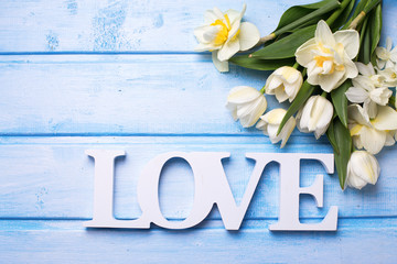 Spring white tulips and narcissus flowers  and word love on blue