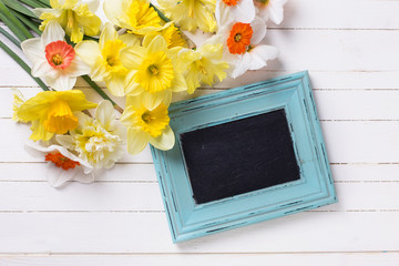 Fresh  spring yellow narcissus flowers  and empty blackboard on