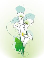 Calla lilies abstract