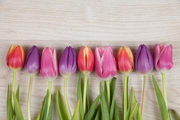 Tulpen auf einem Holzhintergrund