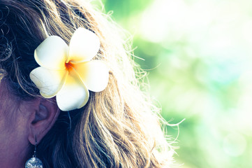 ハワイのイメージ,プルメリア,花の髪飾り
