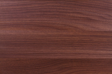 Texture of wood background closeup.  Horizontal seamless wooden backdrop