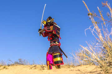 Samurai in ancient armor, with a sword. warrior