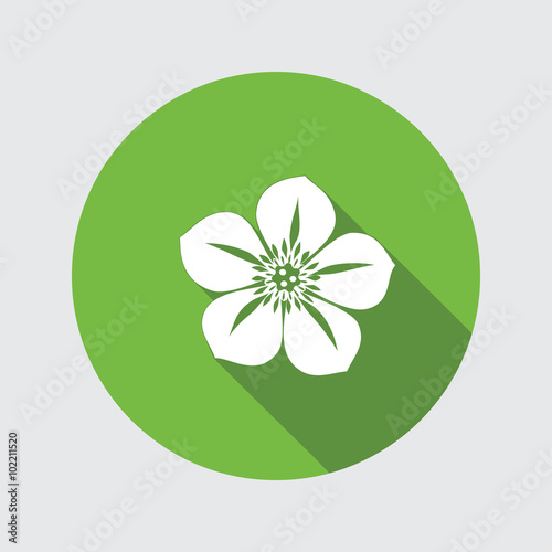 Flat Flowers Icon - Flowers Healthy
