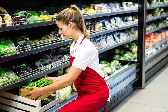 Female worker putting vegetable box in shelf
