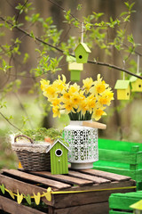 Easter decoration with spring flowers, narcissus blooms.