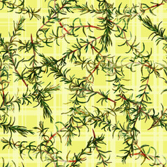 Rosemary, floral seamless pattern, Fresh branches of herbs scattered over gingham checks, woven effect. Handmade watercolor illustration. Fabric texture. Floral vintage design. Wallpaper.