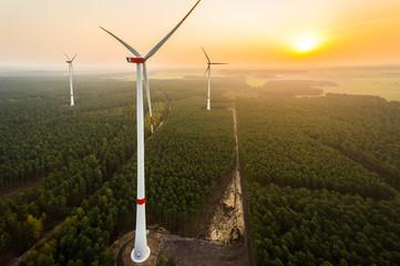 Luftbild eines Windparks im Wald bei Sonnenaufgang