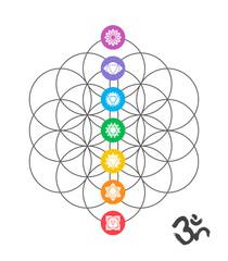 Colorful chakra icons on Sacred geometry design