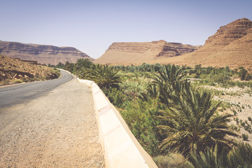 Wide view of canyon and cultivated fields and palms in Errachidi