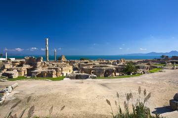 Poster de jardin Tunisie Tunisia. Ancient Carthage. Panorama of Antonine Baths - large column from frigidarium on left side