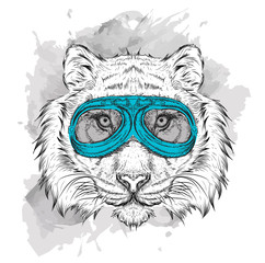 Portrait of a tiger in motorcycle glasses. Vector illustration