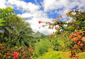 Montagne Pelée (Bald Mountain Volcano), Martinique, Caribbean