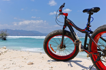 fatbike in front of the sea