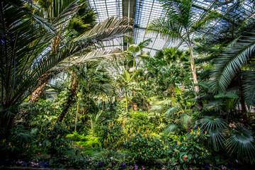Gewächshaus im Palmengarten in Frankfurt am Main