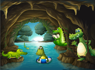 Crocodiles swimming in the cave