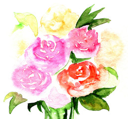 Hand drawn watercolor illustration of roses