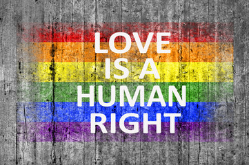 Love is a human right and LGBT flag painted on background textur