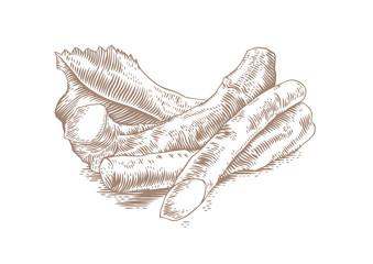 Roots of horseradish