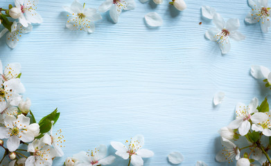 Fototapete - art Spring border background with white blossom