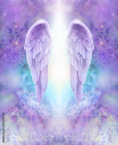 31c92b8ee Lilac Angel Wings - beautiful pair of lilac Angel wings with white light  flowing down between, floating on an intricate lace like lilac and  turquoise ...