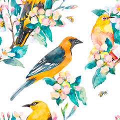Spring pattern. Flowering branch. Oriole and White-eye bird watercolor pattern. Bees,wasp. Watercolor. Vector.