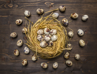 quail eggs in a nest and laid out around it on wooden rustic background top view close up