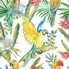 Foto op Canvas Papegaai Parrots and exotic flowers. Macaw seamless pattern.Topical flower,leaves pitaya.Dragonfruit.