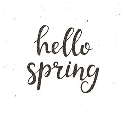 Hello spring. Hand drawn typography poster