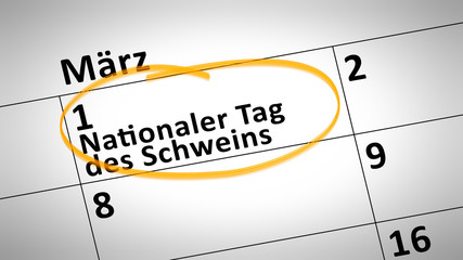 National Day of the Pig first of March in german language