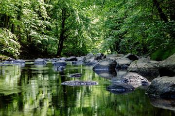 Wunderschöner wilder Fluss