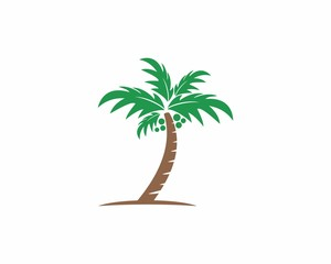 Coconut/Palm Tree Logo