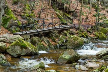 Nationalpark Harz Ilsetal