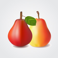 Red and yellow pears isolated on white