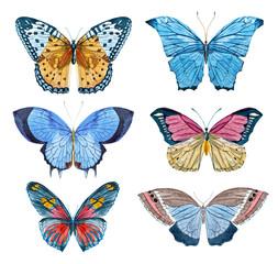 Watercolor raster butterflies